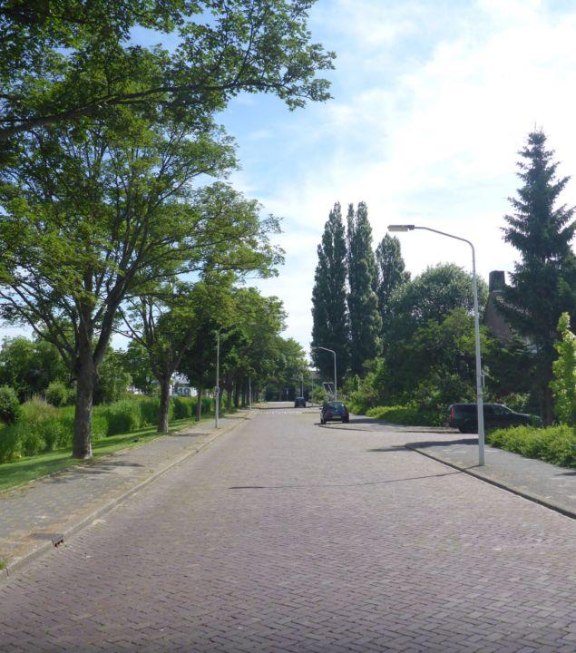 Klimaatadaptie Gasthuiswijk gemeente Leiden